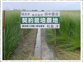 契約栽培農地
